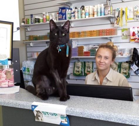 Alf Waiting to Greet Customers