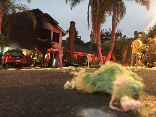 Firefighters Saved a Feline from This Burning Home