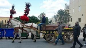 """E' morto Benedetto Varisco, l'uomo che amava i cavalli.  L'ultimo viaggio sullo """"stràscino"""""""