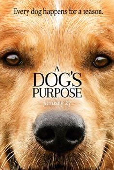Can Dostum – A Dog's Purpose
