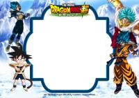 FREE Printable Dragon Ball Super Broly Invitation ...