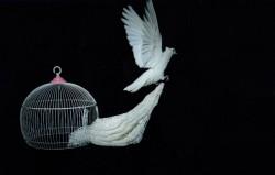 Un groupe de cinq prisonnières bahá'íes et cinq autres prisonnières d'opinion ont créé un ouvrage au crochet en soie blanche en l'honneur du bicentenaire. Elles ont ensuite utilisé cet ouvrage pour créer une composition photographique pour exprimer leurs sentiments.