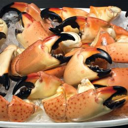 Asst. Stone Crab Claws