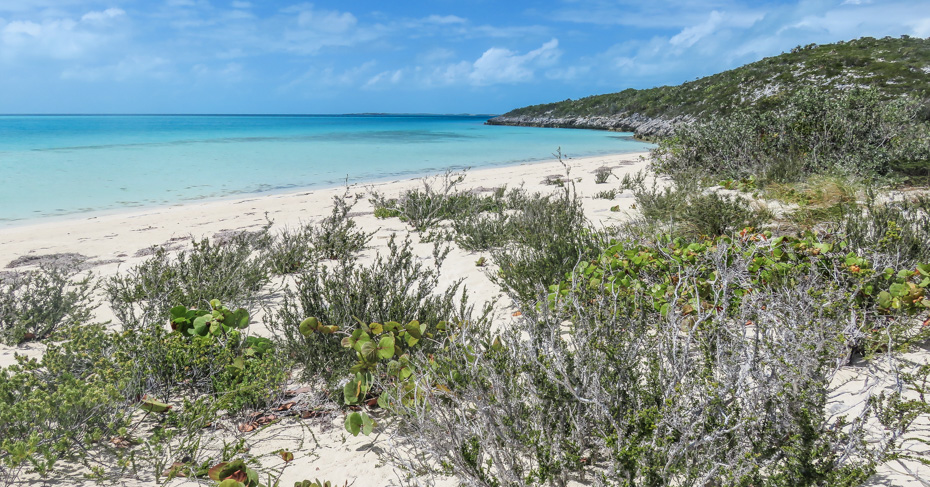 Staniel Cay Travel Guide: Visiting the Exuma Pigs and Thunderball Grotto