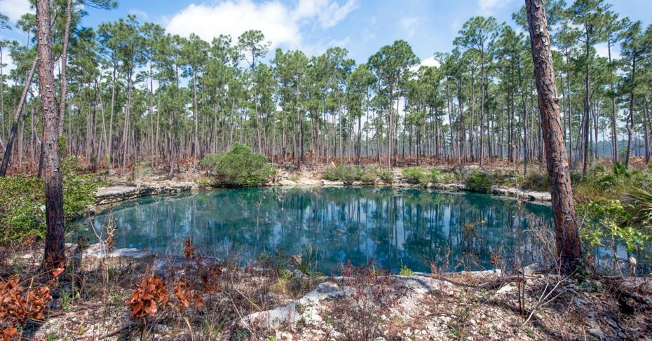 Abaco Bahamas Blue Hole on Abaco Island. Abaco National Park. Copyright Bahamas Ministry of Toursim