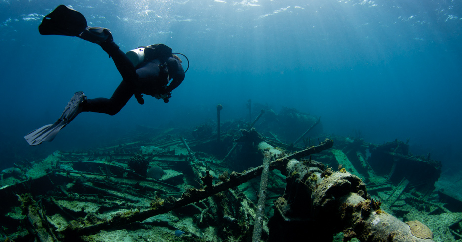 Bahamas Scuba Diving: Guide To The Best Diving In The