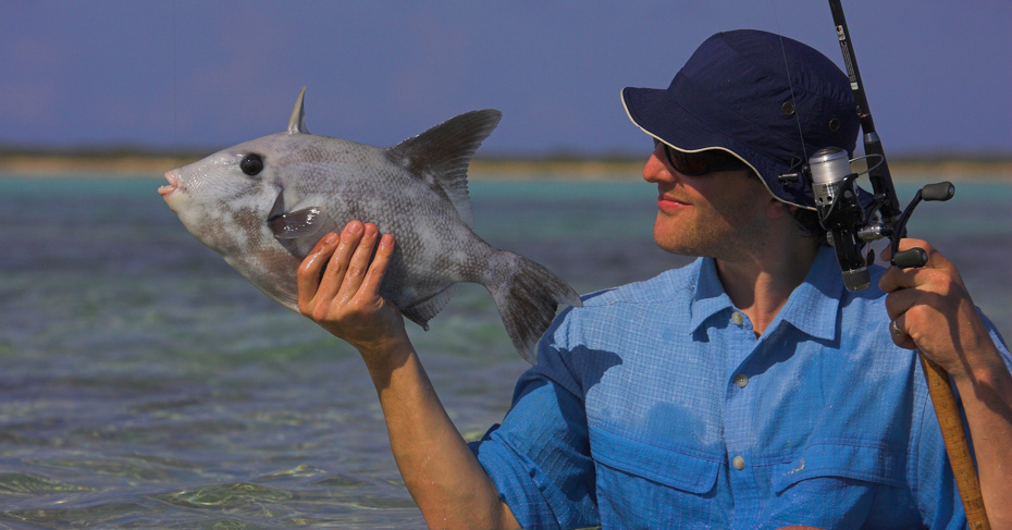 Take a Bahamas fishing tour with Bahamas Air Tours and discover the best Bahamas fishing destinations. From Bonefishing Bahamas take a Bahamas Fishing Charters and private tour.