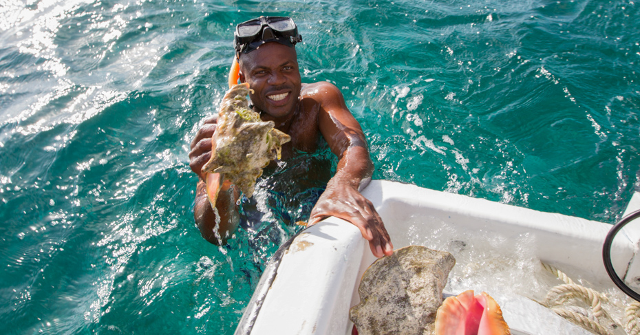 Bahamas Conch: In Search of the Nation's Favourite Food