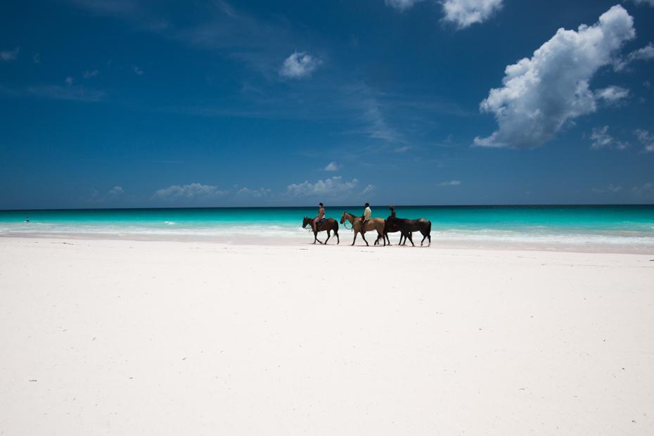 Horse riding Bahamas day trip, horseback riding Freeport Bahamas and Nassau