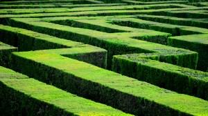 Zigzag Maze