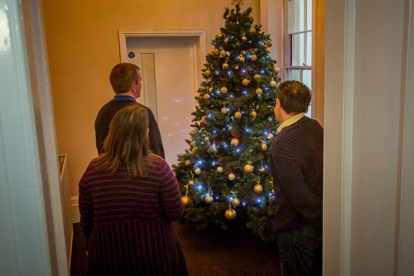 Waitrose Christmas Decorations