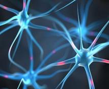 De la antimateria a la antimemoria: Nueva teoría sobre la formación de recuerdos