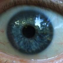 Auge_Ausschnitt_weiss_zu_weiss