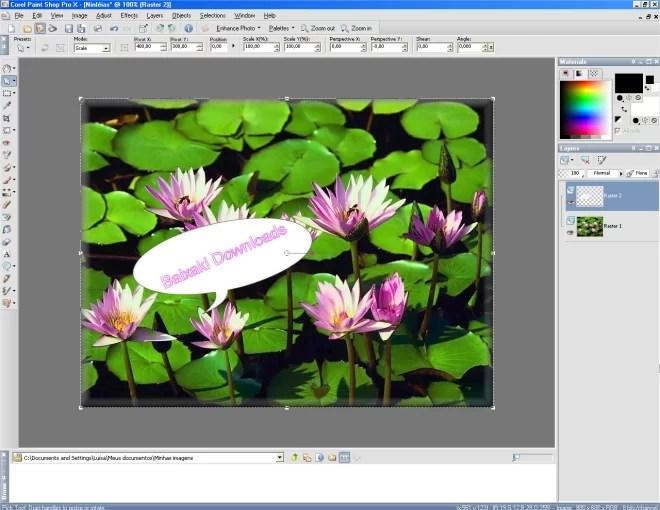 Interface do Corel Paint Shop Pro X