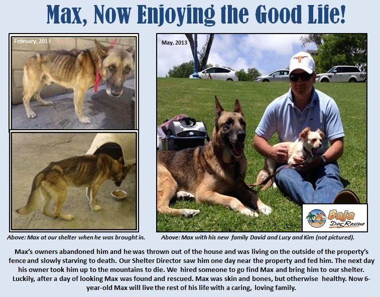 Max update