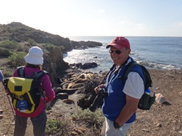 Rob Nawojchik guides Searcher passengers around the elephant seal haul-out areas on scenic Isla San Benito.