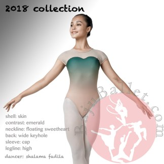 2018 collection L14