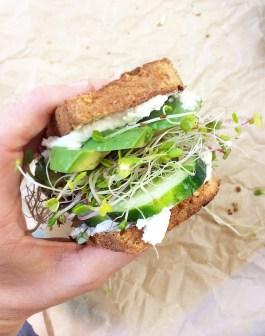 Goat Cheese & Avocado Sandwich