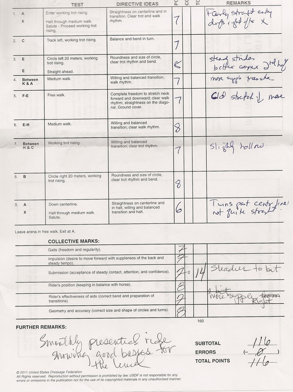 Related Keywords & Suggestions for 2013 usdf tests