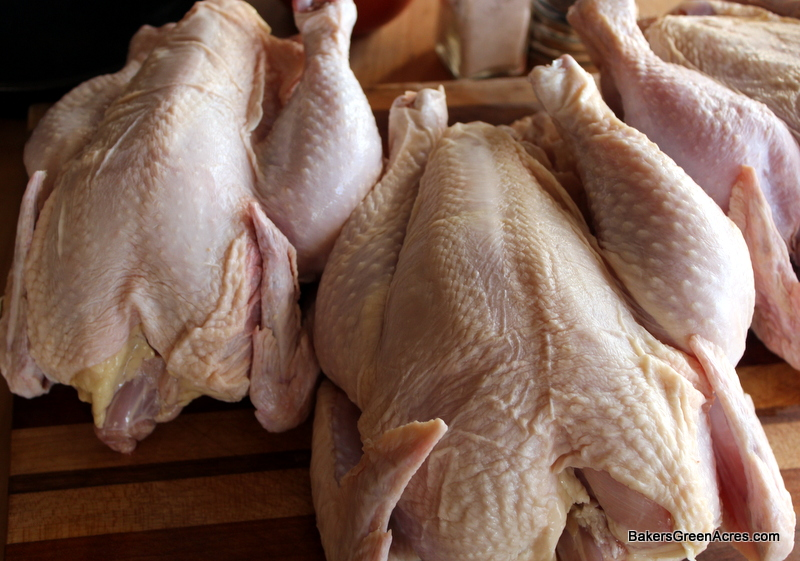 You can farm! Order your custom raised chickens today!