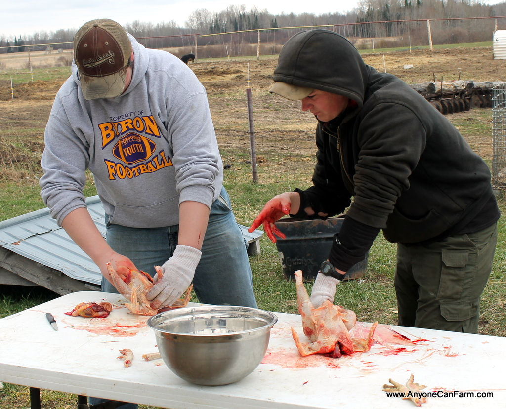 Sam instructs a student on the finer points of gutting a chicken.