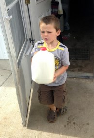 Real milk for your family from your cow herd share.