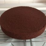 Large Chocolate Madeira Cake