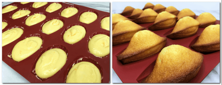 Photo 7: Madeleine mold filled with the batter Photo 8: Baked madeleines in the mold