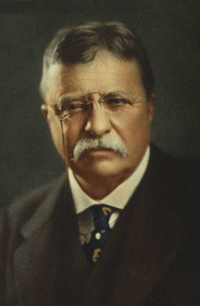 Theodore (Teddy) Roosevelt - Development