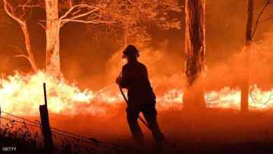 صورة ارتفاع حصيلة قتلى حرائق الغابات في أستراليا