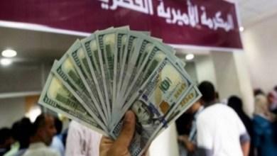 صورة مرفق الرابط.. فحص الأسماء المستفيدة من المنحة القطرية 100$ للاسر الفقيرة بغزة