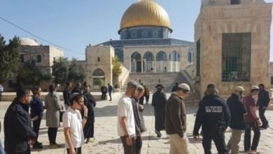 """صورة مستوطنون يقتحمون """"الأقصى"""" بحماية شرطة الاحتلال"""