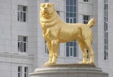 صورة دولة آسيوية تكرّم كلبا بتمثال ذهبي