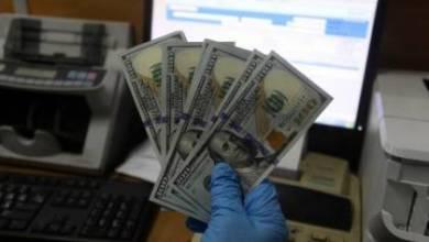 صورة رابط فحص أسماء المستفيدين من المنحة القطرية 100 دولار