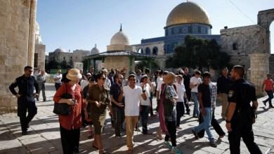 صورة عشرات المستوطنين يقتحمون الأقصى بحماية شرطة الاحتلال