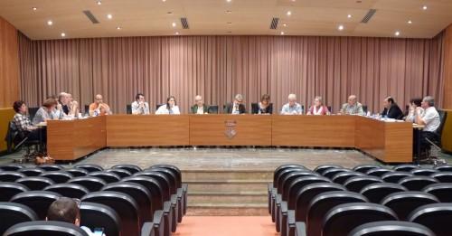 Imatge d'Arxiu del Ple de Balaguer