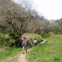 湘南、藤沢、鎌倉のノルディックウォーキング教室写真