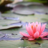 瞑想イメージ
