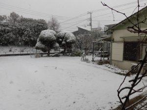 2018大雪3