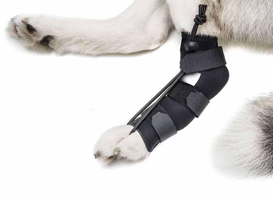 broken-legs-asc-right