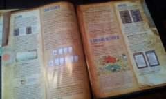 Il manuale a colori è ben realizzato, ma qualche regola appare poco chiara e sembrano mancare i contenuti delle ultime FAQ ufficiali della precedente edizione.