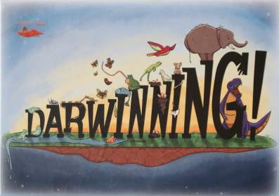 La scatola di Darwinning