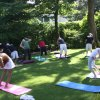 Why I think you don't need the Sanskrit Terms for Yoga Poses - 30 Sep 15