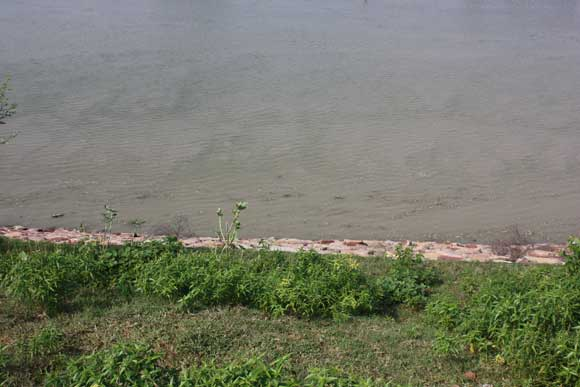 Polluted Water of the Yamuna in Vrindavan not Treatable anymore – 5 Feb 11