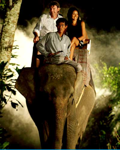 balade-elephant-2