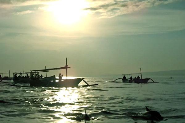 voir-dauphin-lovina-beach