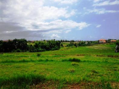 Land for sale in canggu Bali - LCG076