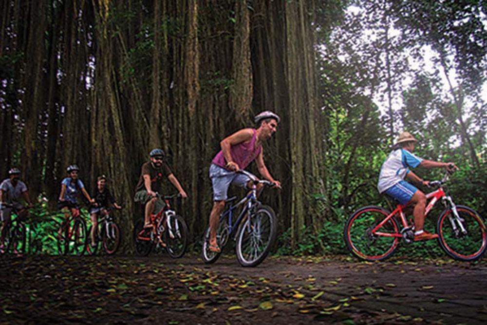 Bali Bongkasa Cycling Tours - Gallery 06150217