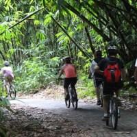 Bali Penglipuran Cycling Tour