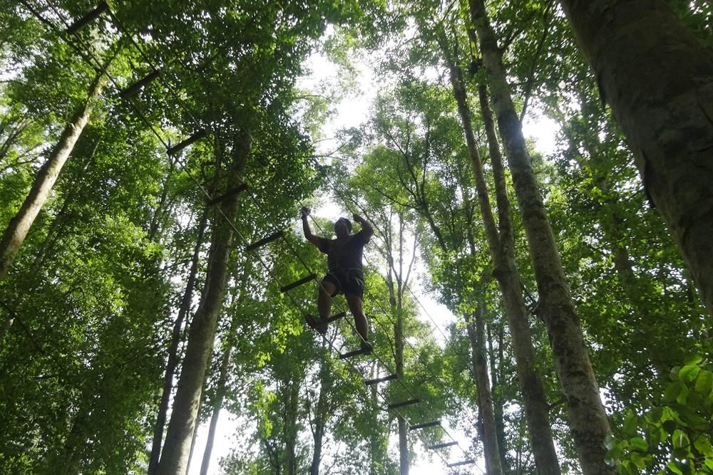 Bali Treetop Bedugul Adventure Tour - Gallery 01050317